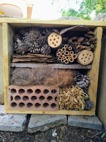 Selena and Lizzy built a 'Bug Hotel'